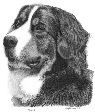 Mocha drawing